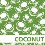 Satz des geschnittenen Kokosnuss-Hintergrund-Vektors Lizenzfreie Stockfotos