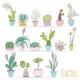 Satz des Kaktus in den Töpfen lokalisiert auf weißem Hintergrund Lizenzfreies Stockfoto