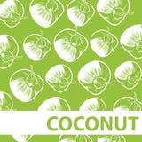 Satz des Kokosnuss-Hintergrund-Vektors Stockbilder