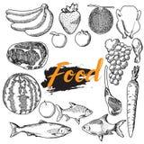 Satz des Lebensmittelhandabgehobenen betrages lizenzfreie abbildung