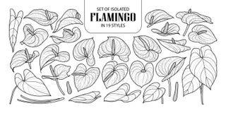 Satz des lokalisierten Flamingos in 19 Arten Nette Hand gezeichnete Blumenvektorillustration in der schwarzen Entwurfs- und weiße vektor abbildung