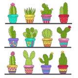 Satz des lokalisierten Kaktus in den Töpfen auf Regal Stockbild