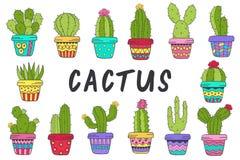 Satz des lokalisierten Kaktus in der Farbe Stockfoto