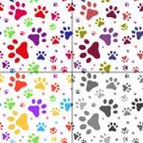 Satz des nahtlosen Musters mit Katzenabdrücken Stockbilder
