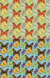 Satz des nahtlosen Schmetterlingsmusters Lizenzfreies Stockfoto