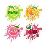 Satz des neuen Konzeptes der Juice Logo Fruits Over Paint Splash-Hintergrund-Naturkost-landwirtschaftlichen Produkte Stockbilder