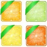 Satz des Quadrats trägt Scheiben mit grünem Band Früchte Lizenzfreies Stockbild