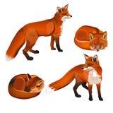 Satz des roten Fuchses lizenzfreie abbildung
