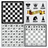 Satz des Schachfigurelements, des Siegers und des loseren Konzeptes, in einem fairen Spiel vektor abbildung