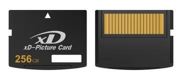 Satz des schwarzen Standards 256-GB-digitale xd codierte Karten Front und Rückseite mit Gold treten auf einem weißen Hintergrund  stock abbildung