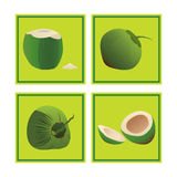 Satz des tropische Frucht-Kokosnuss-Vektors Lizenzfreies Stockfoto