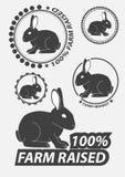 Satz des Vektorschattenbildes das Kaninchen, Hase Hasejagd Kaninchenschattenbilder Vektor Stockfoto