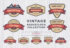 Satz des Weinleseausweises/Logodesign, Retro- Ausweisdesign für Logo Stockfoto