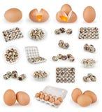 Satz Eier lokalisiert auf Weiß Lizenzfreie Stockfotos