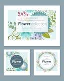 Satz Einladungskarten mit bunten Blumen 1 Lizenzfreie Stockbilder