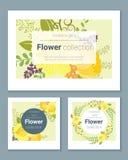 Satz Einladungskarten mit bunten Blumen 5 Lizenzfreies Stockbild