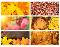 Satz Fahnen mit Herbstlaub und Äpfeln Stockfoto