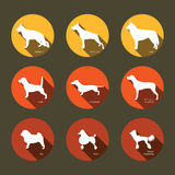 Satz flache Ikonen mit Hundeschattenbildern Stockbilder