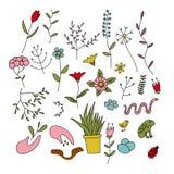 Satz Frühlingsanlagen, -blumen und -tiere Stockfotos