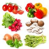 Satz frech Gemüse und Kräuter auf Weiß Lizenzfreie Stockbilder