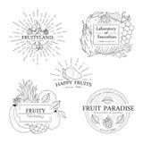 Satz Fruchtausweise, -logos und -Gestaltungselemente Stockfotografie