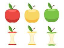 Satz ganze Äpfel und Apple-Kerne Stockfotografie
