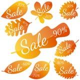 Satz gelb-rote Blätter des Herbstes mit Aufschrift Verkauf Lizenzfreie Stockfotos