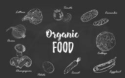 Satz Gemüse des biologischen Lebensmittels übergeben gezogene Kreideskizze auf einer Tafel Vektorillustration für Retro- Weinlese Lizenzfreie Stockfotos