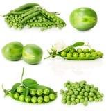 Satz grüne Erbsen lokalisiert auf dem weißen Hintergrund Stockfotografie
