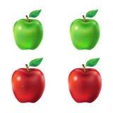 Satz grüne und rote Äpfel der Vektorillustration Stockbild