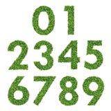 Satz grünes Gras-Zahlen Lizenzfreies Stockfoto