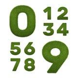Satz Graszahlen auf Weiß Stockbild