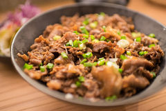 Satz gyudon: japanisches Lebensmittel Lizenzfreie Stockfotos