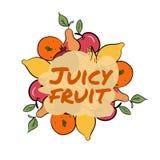 Satz Hand gezeichnete Fruchtikonen Auch im corel abgehobenen Betrag Stockfotografie
