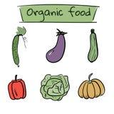 Satz Hand gezeichnete Gemüseikonen Auch im corel abgehobenen Betrag Lizenzfreie Stockfotografie