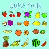 Satz Hand gezeichnete saftige Früchte und Beeren Stockfoto