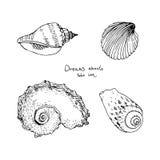 Satz Hand gezeichnete Seeoberteile Stockbilder
