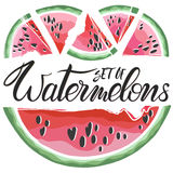 Satz Hand gezeichnete Wassermelonen Stockfoto