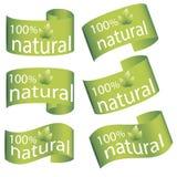 Satz hellgrüne Aufkleber, Flagge mit Blättern für organisches, natürliches, eco oder Bioprodukte Stockbild
