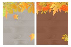 Satz Herbstfahnen mit Ahorn, Eiche, Eberesche auf einem hölzernen Hintergrund Schablone für einen Beleg, Rabatt, Saisonverkauf Stockfoto