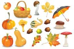 Satz Herbstgegenstände Verschiedene Arten der Kürbise, Pilze, Regenschirm, Äpfel und Fallblätter Vektorillustrationssammlung stockfotografie