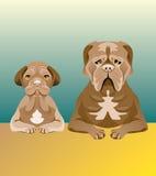 Satz Hunde, die vorwärts schauen Stockfoto