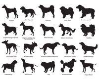 Satz Hunde silhouettes-3 lizenzfreie abbildung