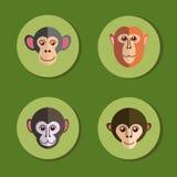 Satz Ikonen mit Affen Stockfotografie
