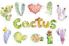 Satz Kaktus-Aquarellkakteen der hohen Qualität handgemalte Stockfotos