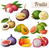 Satz Karikaturlebensmittelikonen Exotische Früchte lokalisiert auf weißem Hintergrund Stockfotografie