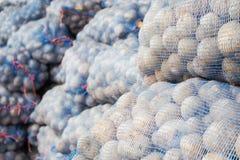 Satz Kartoffeln Stockfoto