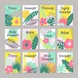 Satz kreative Universalblumenkarten in der tropischen Art vektor abbildung