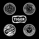 Satz Logos mit Tigern, gestreiften Ikonen und lagels Lizenzfreie Stockfotos