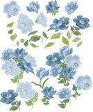 Satz lokalisierte blaue Farben, Elemente und Blumensträuße Stockfoto